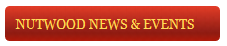 News Heading